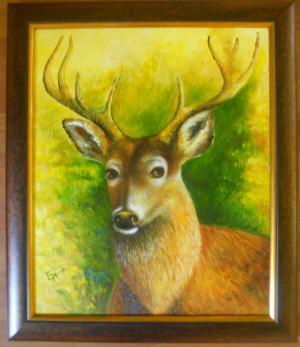 Deer   №592