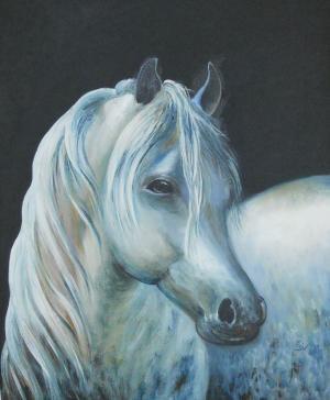 White horse   №379