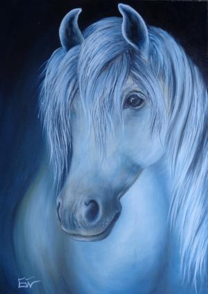 Cheval blanc   №764